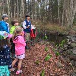 Audubon spring 2